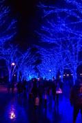 渋谷の街が幻想的空間に イルミネーションイベント来月から開催