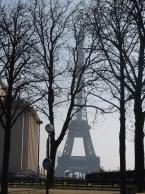 三月のパリの街並み